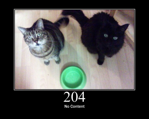 204 No Content - The server is not returning any content after successfully processing the request.