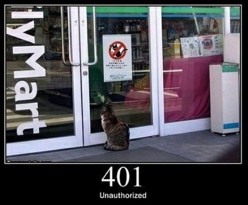 401 Unauthorized-   When authentication is required and has failed or has not yet been provided.