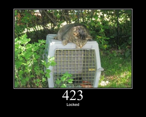 423  Locked  The resource that is being accessed is locked.