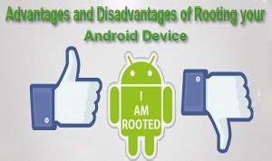 Advantage-and-Disadvantage-of-Rooting